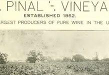 El Pinal Vineyard